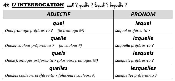 French Lesson 143 - Relative pronoun LEQUEL (LAQUELLE