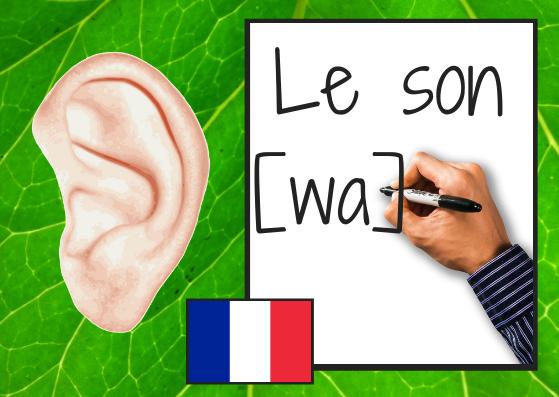 Le son [ wa ]et ses graphies