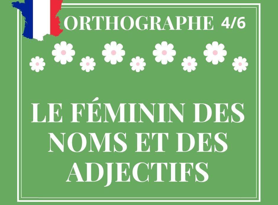 ORTHOGRAPHE 4/6 : le féminin des noms et des adjectifs