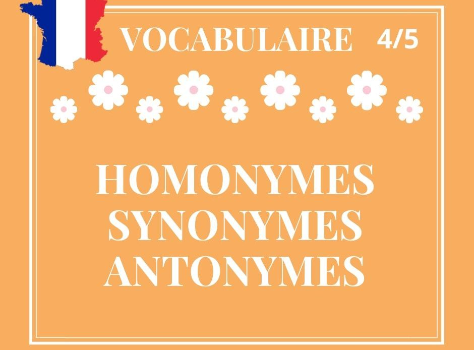 VOCABULAIRE 4/5 : homonymes, synonymes, antonymes