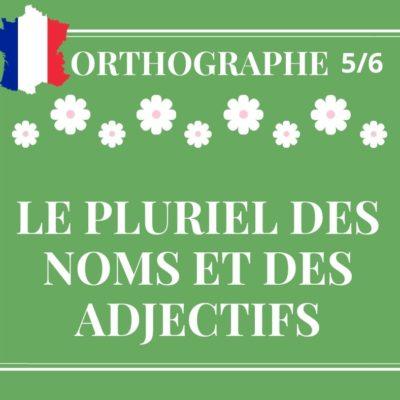 ORTHOGRAPHE 5/6 : le pluriel des noms et des adjectifs