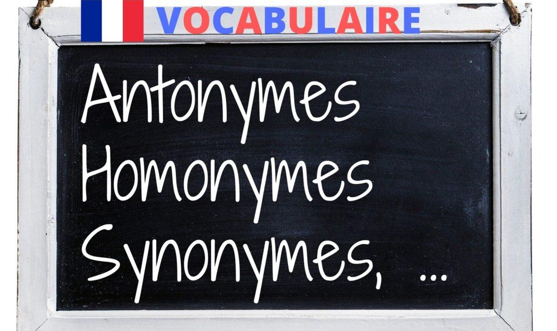 Vocabulaire : les relations de sens entre les mots (antonymes, homonymes, synonymes, …)